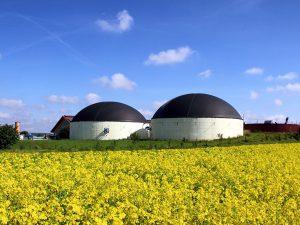 Biogasanlage mit Rapsfeld