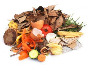 Arrangement verschiedener kompostierbarer Abfälle