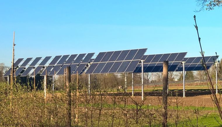 Unser Foto zeigt eine Agrarphotovoltaikanlage am Campus Weihenstephan der Hochschule Weihenstephan-Triesdorf (Bild: HSWT/Michael Beck)