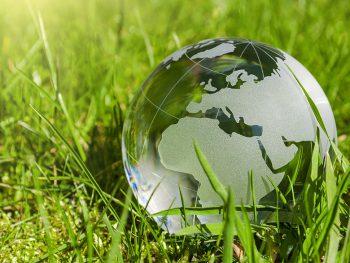 Permalink auf:Rahmenbedingungen der Biomassenutzung