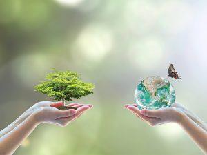 Zwei Hände halten einen Baum und eine Weltkugel mit Schmetterling