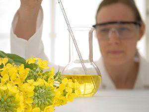 Laborantin beim Pipettieren von Pflanzenöl