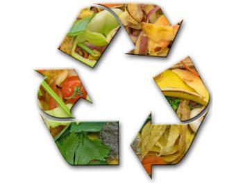 Permalink auf:Biogene Rest- und Rohstoffe